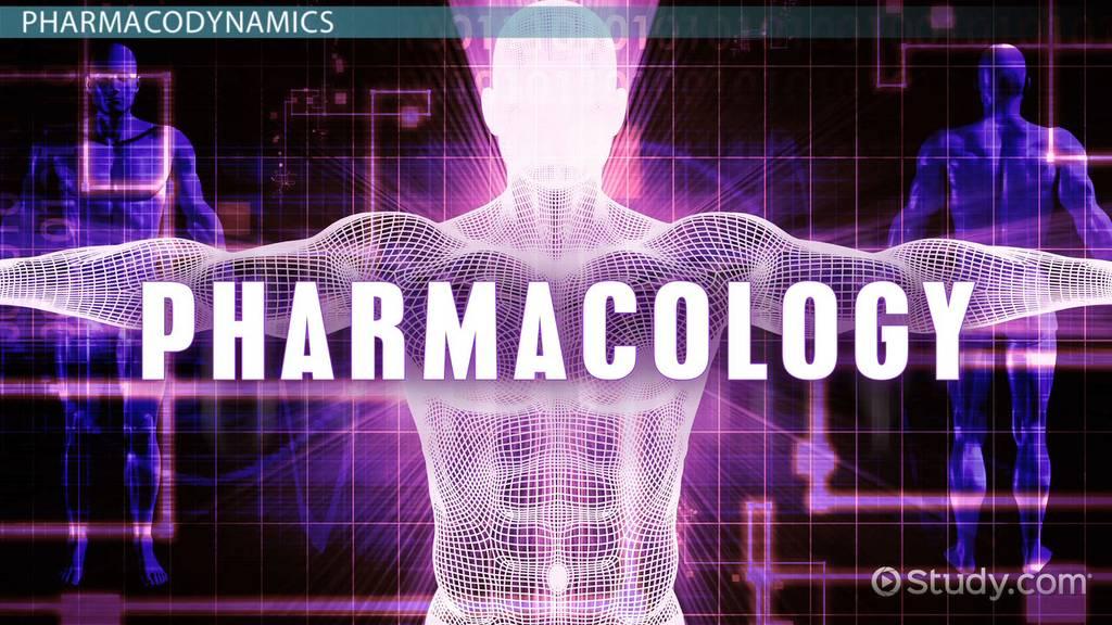 Pharmacokinetics and Pharmacodynamics Photo