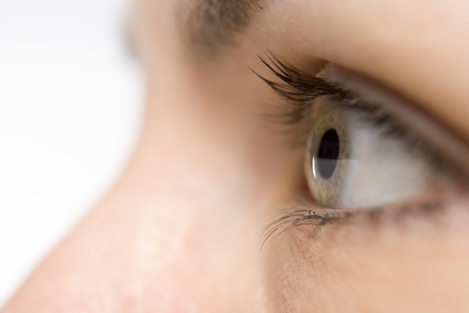 Eye Diseases and Treatments Photo
