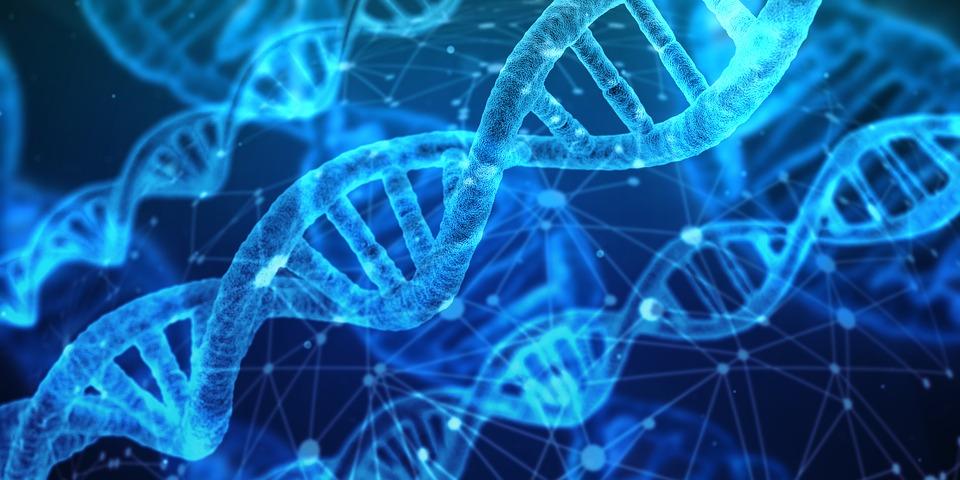 Medical Microbiology 2019 Banner