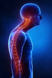 Spinal Disorders and Abnormalities Photo