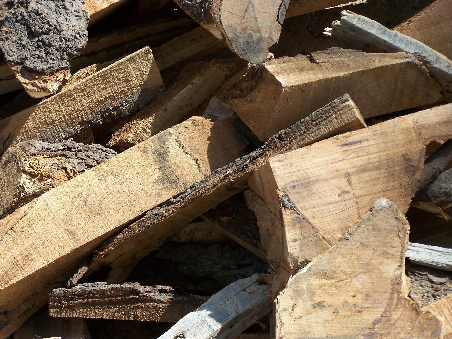Wood Recycling Photo