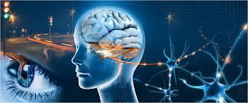 Neuro Ophthalmology Photo