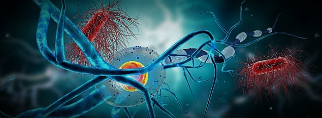 Biomarkers Conference | Biomarkers Congress | Biomarkers Conferences
