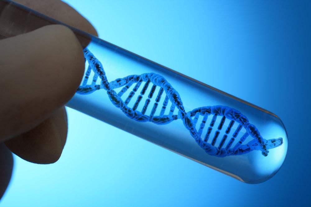 Molecular Biology & Genetics Photo