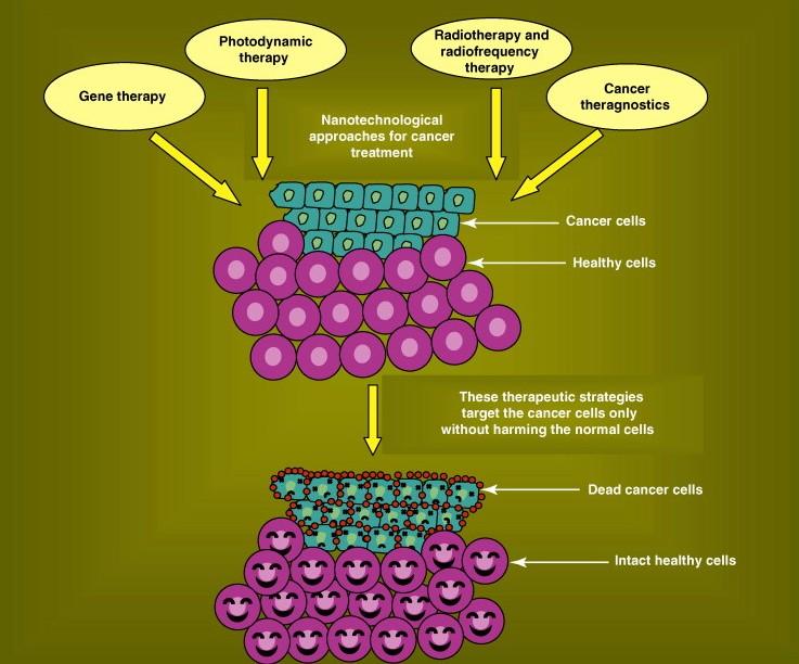 Nanotechnology Conference | Nanotechnology Congress